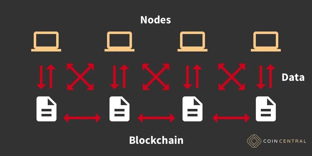 Узлы в блокчейне